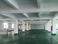 南头穗西工业区独门独院5000平米厂房(带办公室)
