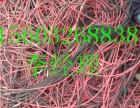 广饶回收各种废电缆