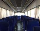 青年客车 336ps 54座 20万公里 包落户