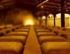 茅台镇大黔朝酒醅原浆酱香白酒窖泥封坛酒全国招商加盟