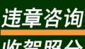 杭州汽车咨询、跑腿、异地年审开委托书