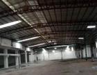 新塘独院3800 平方钢结构厂房出租可分租