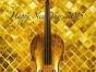 专业小提琴培训一对一辅导