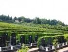 成都然燈寺公墓 溫江大朗陵園 較年輕的蒲江紅楓藝術陵園