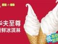 平顶山奶茶冰淇淋 炸鸡汉堡 炒酸奶 鸡蛋仔饮品加盟