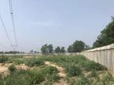 土地19亩寻食品加工厂合作