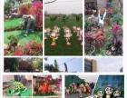 湛江市出租出售变形金刚军事展览仿真恐龙展览五一活动