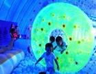 蓝鲸乐园海洋球出租鲸鱼岛乐园百万海洋球出租