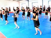 北京青少武术培训青少跆拳道培训暑假班开始招生了