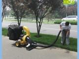 百易自主研发树叶收集器BY-T2 环卫街道树叶清扫机 吸叶机