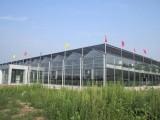 河南奥农苑厂家供应玻璃温室