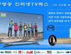 分享一款专业接收韩国高清直播电视的软件APP