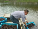 武汉虾龙水产养殖开发有限公司淡水小龙虾养殖技术
