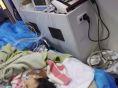 河池医院120救护车出租 怎么联系