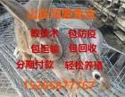 安徽鞍山养殖肉兔杂交野兔,养兔子利润怎样