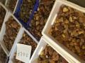 琥珀蜜蜡木石光年私人订制国内一手货源