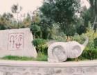 洛阳凤凰山纪念园第三届公益树葬报名征集啦
