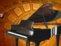 家教钢琴架子鼓小提琴吉他尤克里里一对一上课