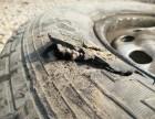 轮胎,流动补胎