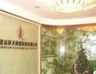 专业网站建设_网站推广_SEO优化推广