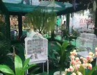 大型商场周年庆典雨屋展览VR雪山吊桥百鸟展活动专业服务