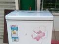 冰柜 保鲜柜
