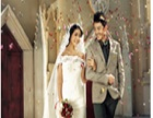 斑马线婚纱摄影 斑马线婚纱摄影诚邀加盟