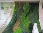 合肥高仿真植物景观设计与施工