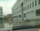 展茅 茅洋工业园 厂房 5000平米