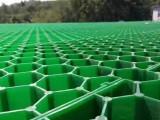 天津西青4公分植草格施工單位