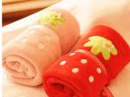 可爱洋果子小草莓 夏季薄款珊瑚绒卷毯 空调毯子 大小号 2色