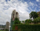 10月交房马尾大桥桥头堡位置住宅底商 50-240平米