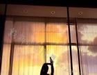 哪里有可以学舞蹈的培训中心,零基础的可以学嘛