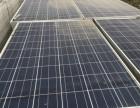 日升多晶260W二手拆卸组件太阳能光伏板