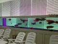苏州大型鱼缸定做嵌墙式水族箱亚克力圆柱型鱼缸