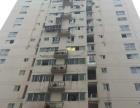 丰泽街 金圣豪园电梯高层 精装2房 南北通透采光拎包入住