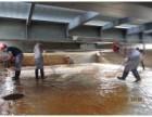 专业清洗水箱 水池消毒质检 番禺区钟村达明清洗行业较低收