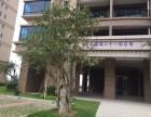 水东碧桂园三房两厅两厕两阳台115平方东南向58万3室2厅