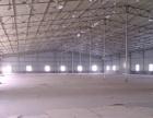 翔安国道附近钢结构厂房高6米3600平米