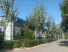 紧邻 309国道肥乡开发区三面环路 厂房 5000平米