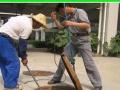 装修后保洁,地板打蜡,保洁、日常保洁、疏通管道等
