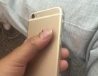 苹果6 国行金色16g 配件齐全