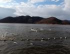 生产销售不充气水库河流湖泊捕鱼渔网