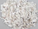 批发供应中药材生牡蛎 牡蛎片 另有煅牡蛎