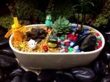 植物微景观体验生活店加盟