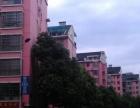 香樟路 万坤图附近 新星小区小公寓管道燃气 带阳台独立卫生间