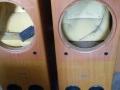 双8寸音箱箱体