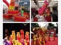 舞狮接开业庆典会务会展发布会等庆典活动
