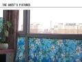 样样红 欧式兰花装饰玻璃贴膜 90厘米宽