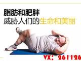 脂老虎减肥快招怎样减肥方法,逆袭你的人生